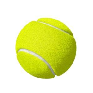 Bola de tênis isga